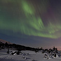 Northern Lights Over A Meadow by Tim Grams