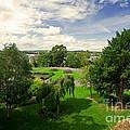 Northernhay Gardens  by Rob Hawkins