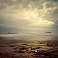 Northumberland Coast by David Pringle