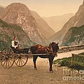 Norwegian Carriage by Padre Art