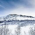 Norwegian Winter by Hakon Soreide