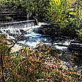 Not Buttermilk Falls by John Herzog