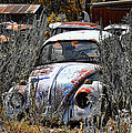 Not Herbie The Love Bug by Douglas Barnard