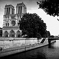 Notre Dame Along The Seine by Carol Groenen