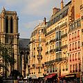 Notre Dame De Paris 3 by Andrew Fare