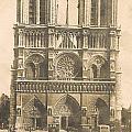 Notre Dame  by Georgia Fowler