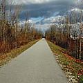 November On Macomb Orchard Trail by LeeAnn McLaneGoetz McLaneGoetzStudioLLCcom