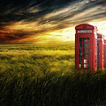 Now Home To The Red Telephone Box by Lee-Anne Rafferty-Evans