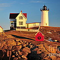Nubble Light Sunset by Catherine Reusch Daley