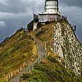 Nugget Point Light House And Dark Clouds In The Sky by U Schade