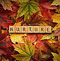 Nurture-autumn by  Onyonet  Photo Studios