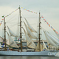 Nve Cisne Branco Passing By Fort Mchenry by Mark Dodd