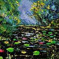 Nympheas 561170 by Pol Ledent