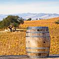 Oak Barrel At Vineyard by David Buffington
