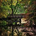 Oak Bridge In Fall by Chris Lord