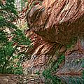 Oak Creek Canyon Walls by Dave Dilli