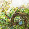 Oak Tree by Rebecca Meredith