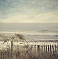 Ocean Breeze by Kathy Jennings