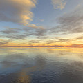 Ocean by Mark Greenberg