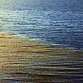 Ocean Spring by Viktor Savchenko