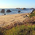 Bandon Oregon Shorelines by Athena Mckinzie