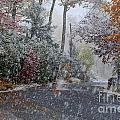 October Blizzard by Andrea Simon