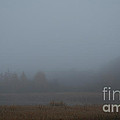 October Fog by Susan Herber