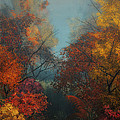 October by Jutta Maria Pusl