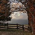 October Moon by Robin-Lee Vieira