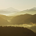 October Morning by Mircea Costina Photography