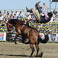 Rodeo Off In A Flash by Bob Christopher