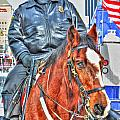 Officer On Brown Horse by Michael Frank Jr