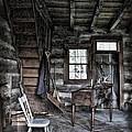 Ohio Cabin by Joan  Minchak