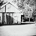 Ohio Shed Bw by Paulette B Wright