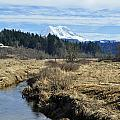 Ohop Valley View Of Rainier by Tikvah's Hope