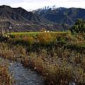 Ojai Valley by Henrik Lehnerer