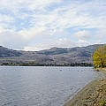 Okanagan Fall by John Greaves