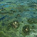 Okavango Delta 4 by Mareko Marciniak