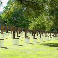 Oklahoma Memorial II  by Malania Hammer