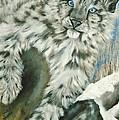 Ol Blue Eyes by Sandra Valentini
