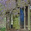 Old Abandoned House by Susan Leggett
