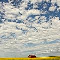 Old Abandoned Red Barn In The Midst by Robert Postma