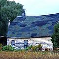 Old Barn by Davandra Cribbie