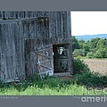 Old Barn Door-i by Patricia Overmoyer
