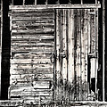 Old Barn Door by Marilyn Hunt