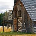 Old Barn Doors by Randy Harris