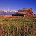 Old Barn, Grand Teton National Park by Bilderbuch