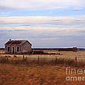 Old Barn by Eena Bo