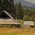 Old Barn On A Hot Summer Day In The Applegate by Mick Anderson