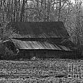 Old Barn Out Back by Brenda Carpenter